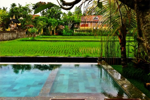 Pools with a view, Ubud