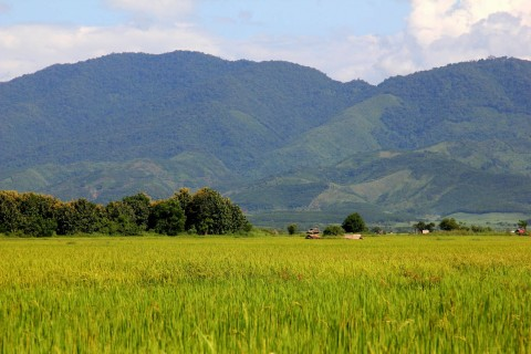 Even more pretty. Photo taken in or around Muang Sing, Laos by Cindy Fan.