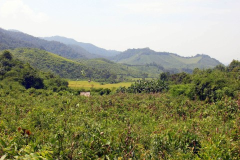 The surrounds are prettier than downtown. Photo taken in or around Udomxai, Laos by Adam Poskitt.