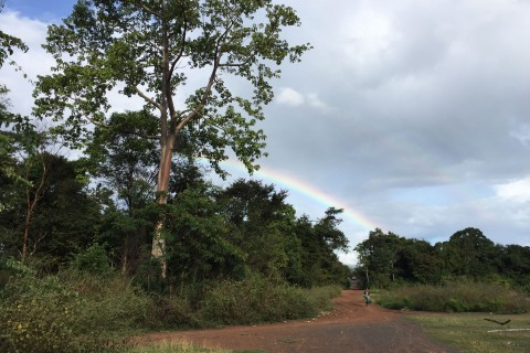 Follow the rainbow. Photo taken in or around Tad Lo, Laos by Cindy Fan.