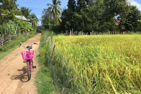 Pink roadster: What more do you need? Photo taken in or around Don Dhet, Laos by Cindy Fan.