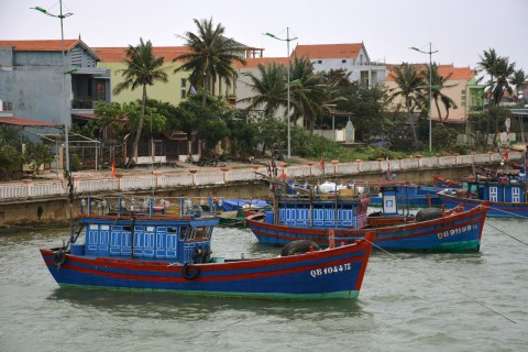 Moored fishing boats.