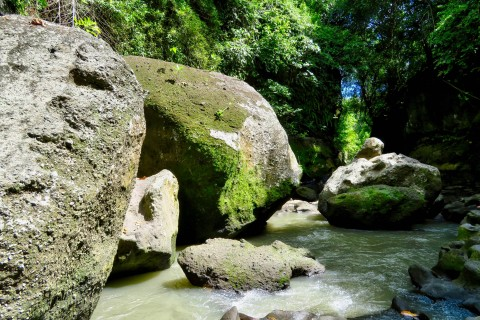 Explore the hidden canyon at Beji Guwang. Photo taken in or around Ubud, Indonesia by Sally Arnold.