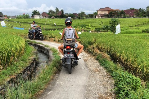 The best way to explore Canggu. Photo taken in or around Canggu, Indonesia by Stuart McDonald.