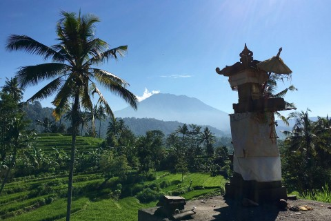 Fields, a shrine and a volcano. Photo taken in or around Sidemen, Indonesia by Sally Arnold.