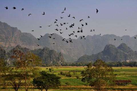 Hpa-an's glorious landscapes. Photo taken in or around Hpa-an, Burma_myanmar by Mark Ord.