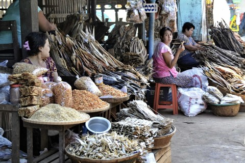 Smelly souvenirs for the family back home. Photo taken in or around Dawei, Burma_myanmar by Mark Ord.