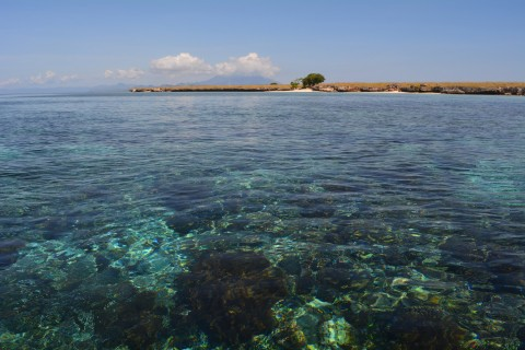 A spot of snorkelling perhaps? Photo taken in or around Pantar, Indonesia by Stuart McDonald.