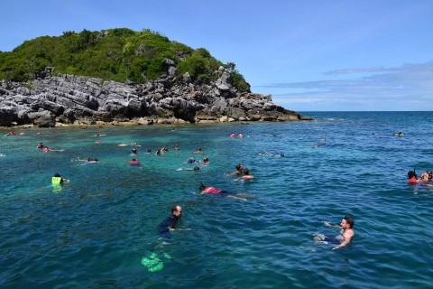 Shall we all have a swim together? Photo taken in or around The Ang Thong Islands, Ko Samui, Thailand by David Luekens.
