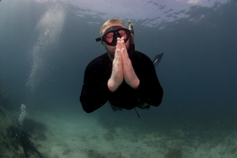No bubbles, no worries. Photo taken in or around Free diving on Ko Tao, Ko Tao, Thailand by Ayesha Cantrell.