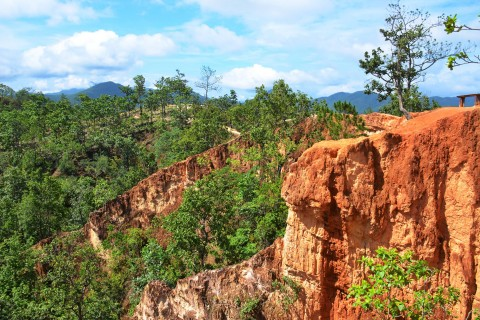 Photogenic. Photo taken in or around Pai Canyon, Pai, Thailand by Mark Ord.