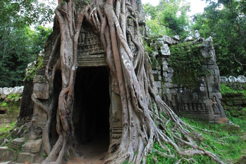 Now that is a doorway. Photo taken in or around Ta Som, Angkor, Cambodia by Caroline Major.