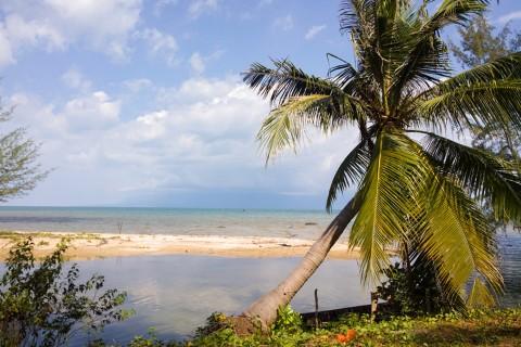 Bai Thom beach.