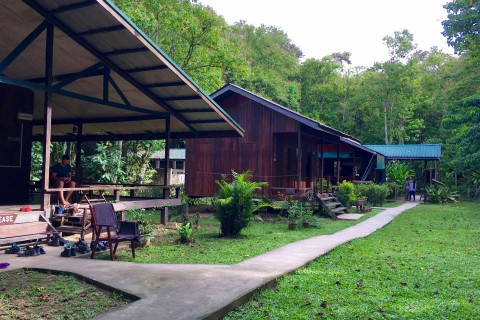 Nature Lodge Kinabatangan is one of several lodges along the river.