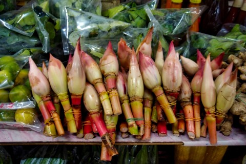 Torch ginger and lime leaves. Photo taken in or around Central & Handicraft Markets, Kota Kinabalu, Malaysia by Sally Arnold.