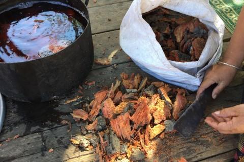 Bark for natural dyes. Photo taken in or around Guide to the Tha Khaek Loop, Tha Khaek Loop, Laos by Cindy Fan.