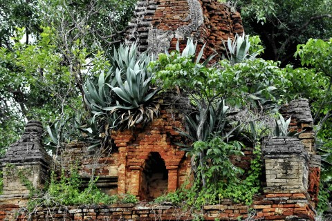 The jungle takes over. Photo taken in or around In Dein, Inle Lake, Burma_myanmar by Mark Ord.