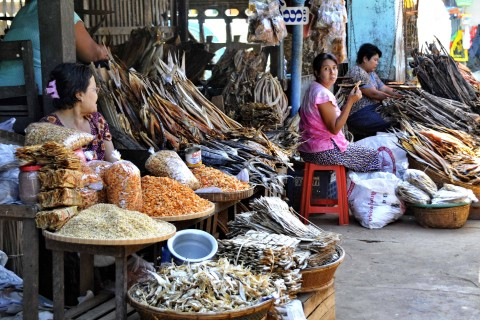 Dawei is a good spot to stock up on dried fish. Photo taken in or around Dawei walking tour, Dawei, Burma_myanmar by Mark Ord.