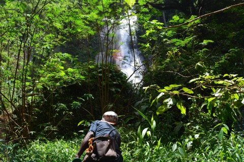 Approaching the main falls. Photo taken in or around Biantal waterfall, Alor, Indonesia by Stuart McDonald.
