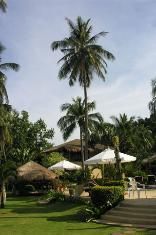 Amber Sands Beach Resort